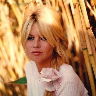 Focus Astro célébrités : Brigitte Bardot